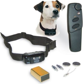 Dog shocking collar